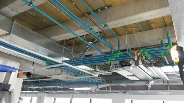 powell fenwick blue ceiling